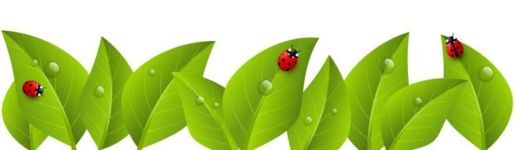 huerto-ecologico